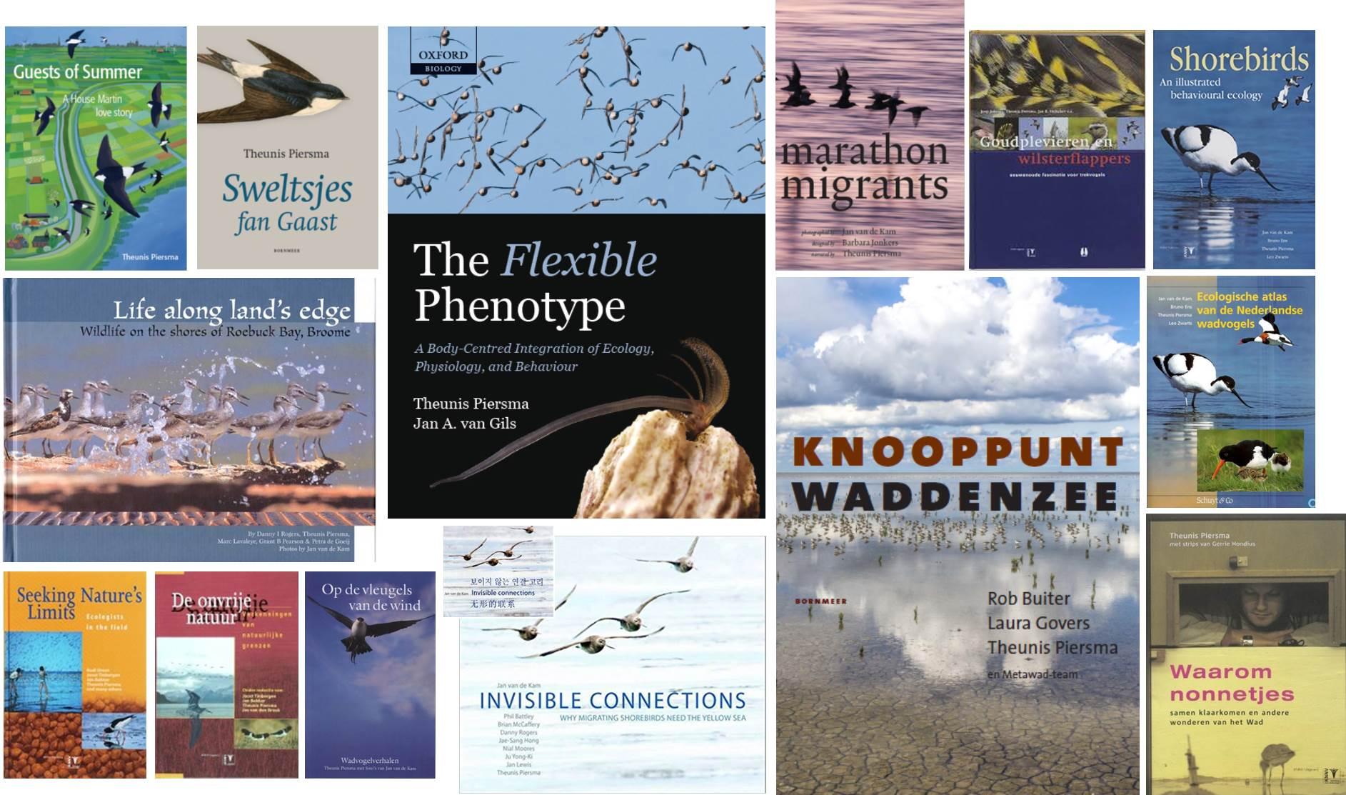 Book compilatie