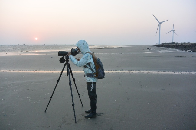 Leizhou scoping
