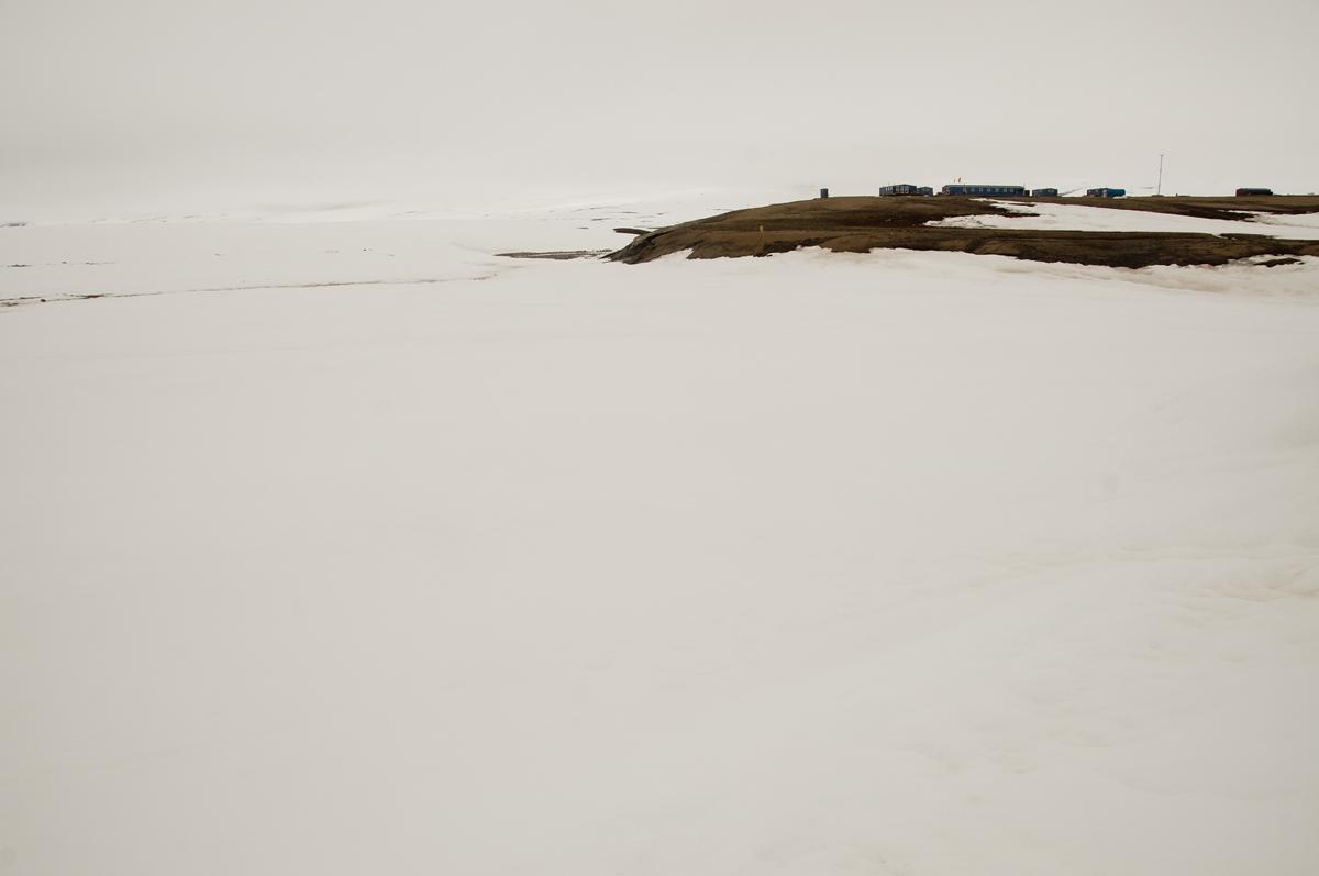 Zackenberg research stationas only snowfree shorebird haven