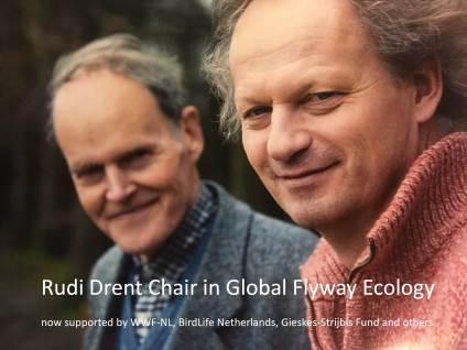 Rudi Drent Chair in Flyway Ecology