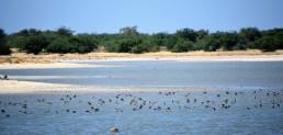 36f dsc_1859 geumbeul reserve deel van 1500 skriezen