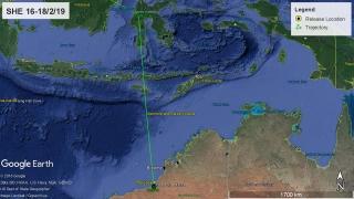 Oriental Pratincole SHE 16-18 February, heading north to Sulawesi. Map: AWSG